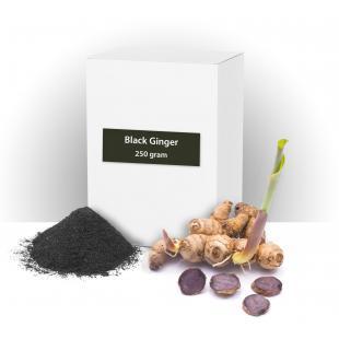 Adaptogen: Black ginger (Kaempferia Parviflora)