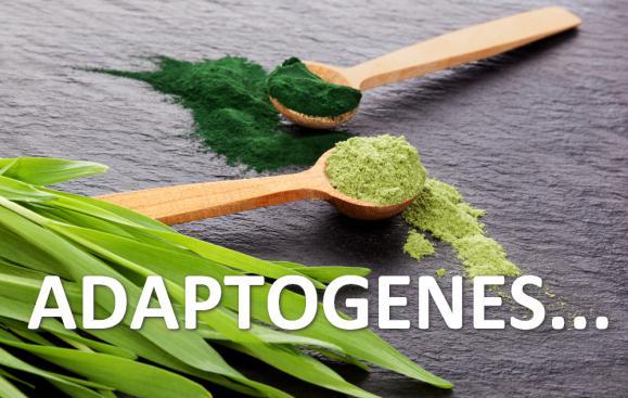 Адаптогены...
